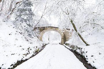 Die Brücke von Etienne Hessels