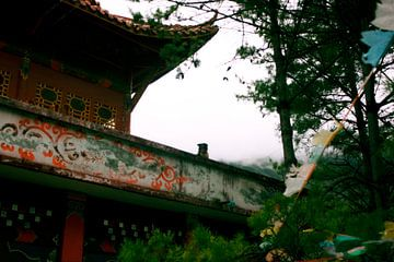 Hond staat op wacht in Boeddhistische tempel von André van Bel