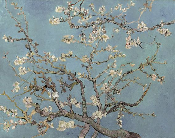 Amandelbloesem van Vincent van Gogh (zacht blauw/early dew)  van Meesterlijcke Meesters