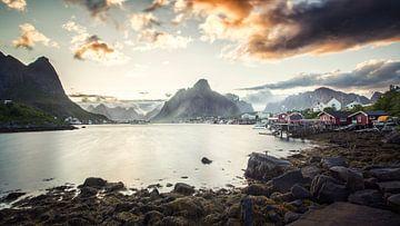 Middernacht zon, Reine, Lofoten  van Niels Devisscher