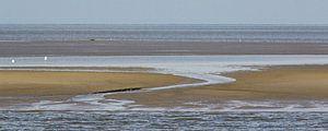 Droogvallende Waddenzee - Engelsmanplaat van