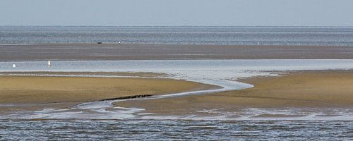 Droogvallende Waddenzee - Engelsmanplaat