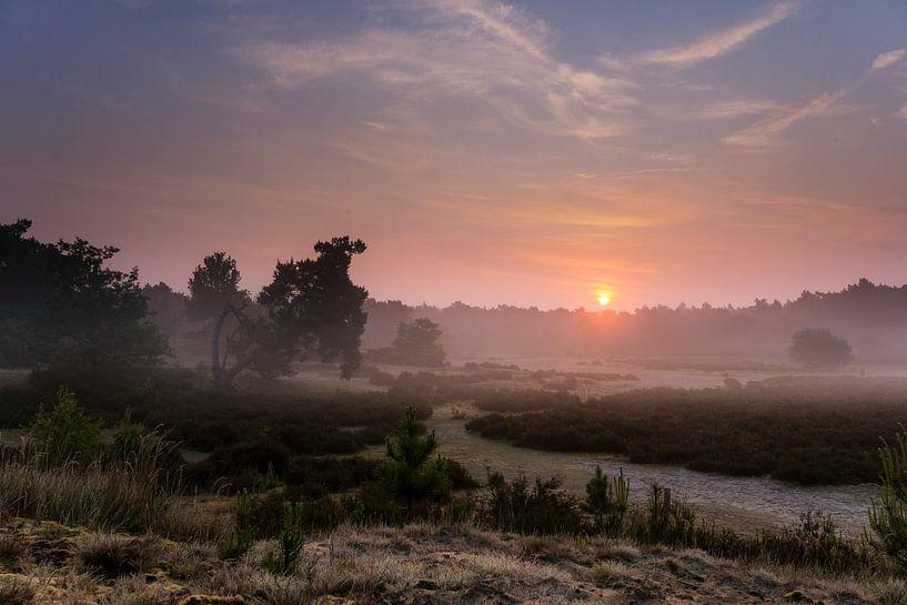 Goedemorgen van Tvurk Photography