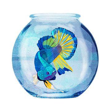 Fish Prison von