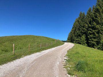 Eenzaam bergpad naar het niets, met lucht, weide en bos van Robert Styppa