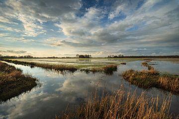 Wyldlannen Nationaal Park De Alde Feanen von Fonger de Vlas