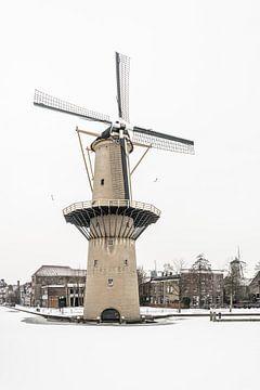 Molen de Kameel in Schiedam van Kok and Kok