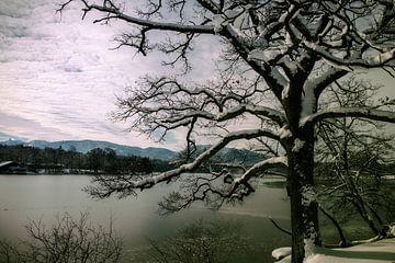 Winter am See von Franz Nagler