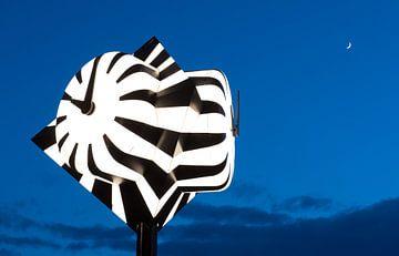 Zebraklok tijdens magisch uurtje van Peter Schütte
