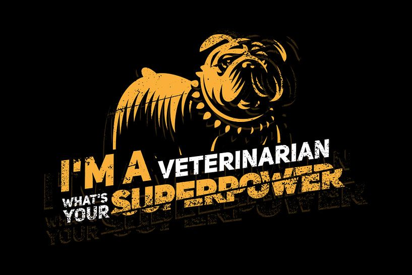 Ich bin Tierarzt, was ist deine Superkraft? van Felix Brönnimann