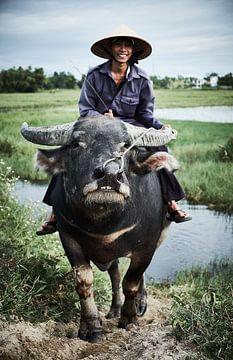 Bauer auf Büffel im Reisfeld von Karel Ham