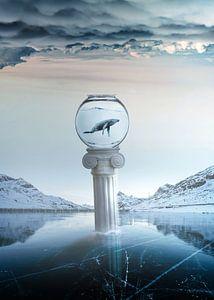 Bevroren dromen van
