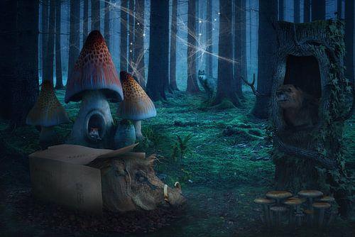Märchenhafter Wald