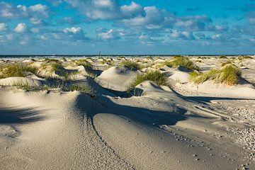 Landscape with dunes on the North Sea island Amrum van Rico Ködder