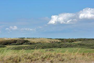 Duinlandschap in het Zwanenwater te Callantsoog met bewolkte blauwe lucht van Ronald Smits