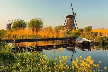 Windmühlen bei Sonnenuntergang, Kinderdijk, Niederlande von Markus Lange