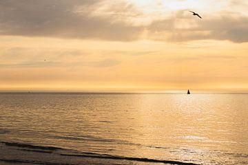 Mysteriös schöner Tag in Scheveningen