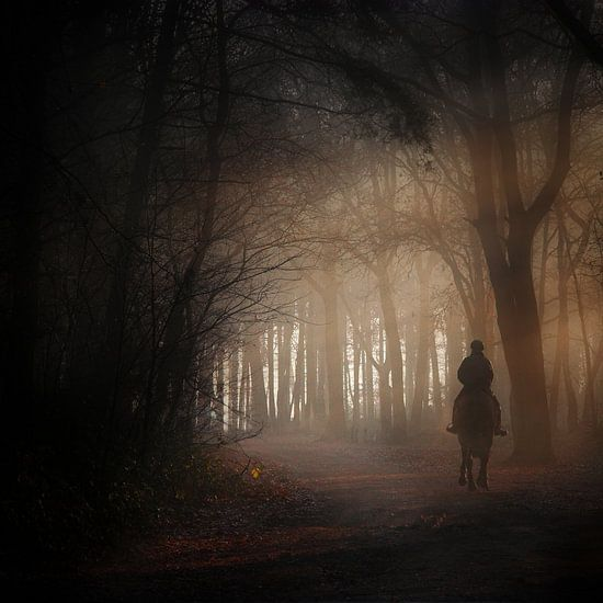 Eenzame ruiter van Ruud Peters