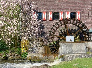 de Brugse molen van Peter Eckert