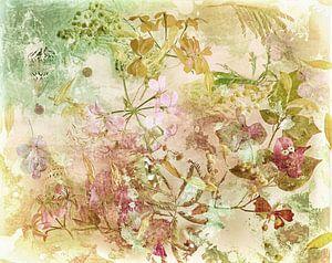 Fleurs pittoresques