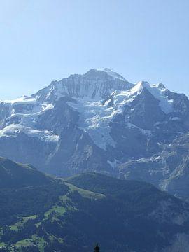 Jungfrau in al haar schoonheid sur Mirjam Otto