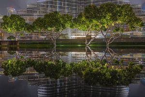 Reflecties in Dubai van