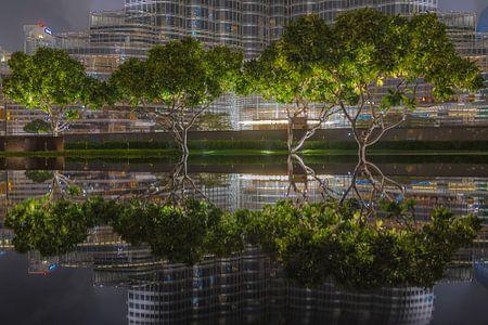 Reflecties in Dubai von michael regeer