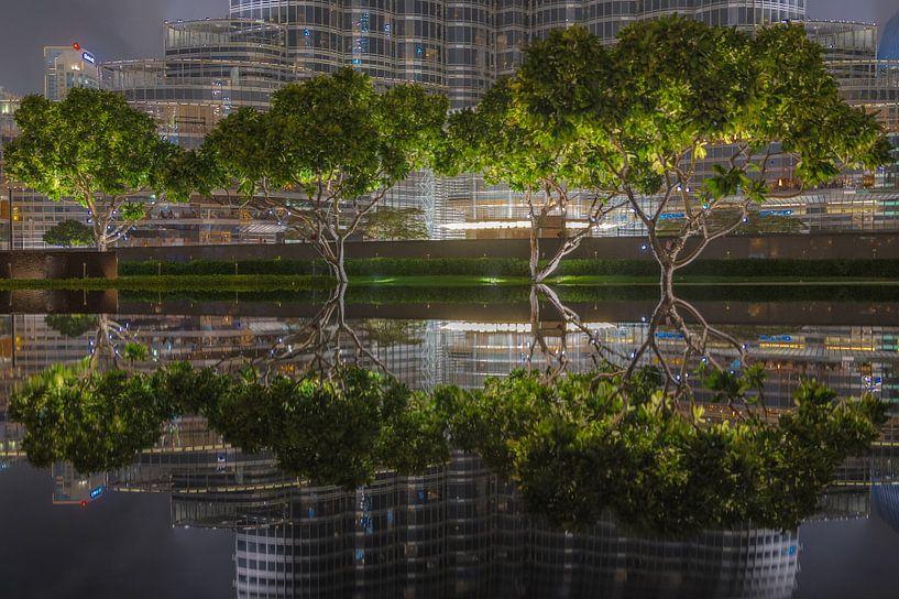 Reflecties in Dubai van michael regeer