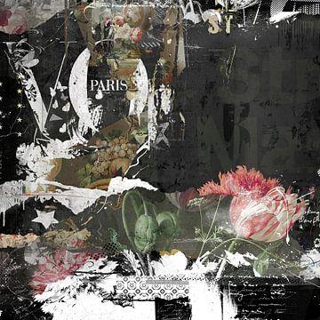 Paris van Teis Albers