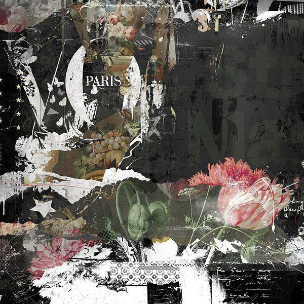 Paris von Teis Albers