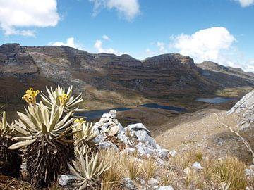 Nationaal park El Cocuy, Colombia von Roos Vogelzang