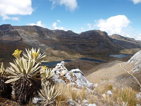 Nationaal park El Cocuy, Colombia