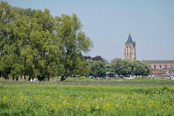Gezicht op Gorinchem van Ruud van der Lubben