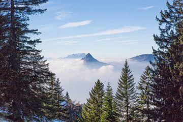 Alpen von Frans Bouvy