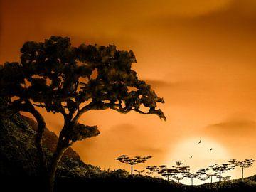 Zonsondergang Afrika van DominixArt