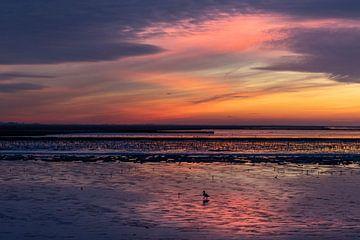 Bergeend tijdens zonsondergang van Anja Brouwer Fotografie