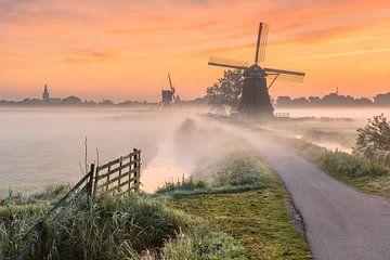 Fräsen im Nebel bei Sonnenaufgang in Streefkerkerk von Ellen van den Doel