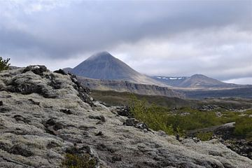 Islands Landschaft von Susan Dekker