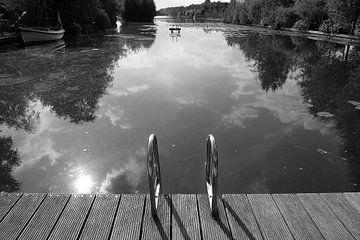 Onaangetast natuur zwemwater. van Frank de Ridder