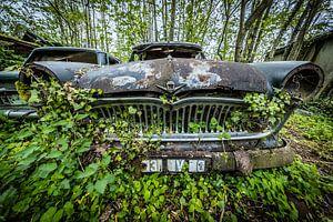 Oldtimer auto in het bos van