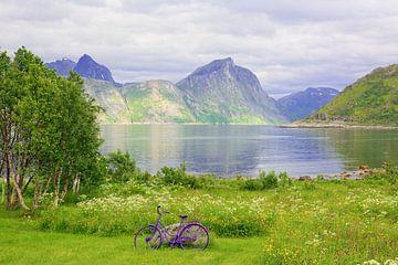 Violette accenten - Eiland Senja in Noord-Noorwegen van Gisela Scheffbuch