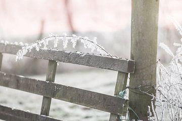 Zonsopkomst in de winter van Jitske Cuperus-Walstra