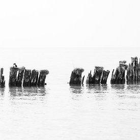 Schwarz-Weiß-Foto von verwitterten Pollern im Wasser von KB Design & Photography (Karen Brouwer)