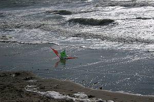 Vlieger in het water