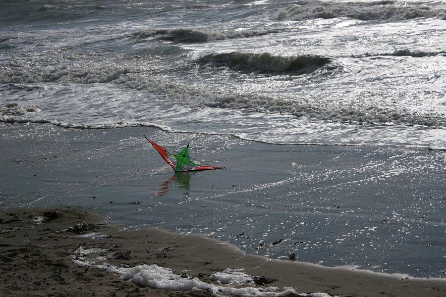 Vlieger in het water van Toekie -Art