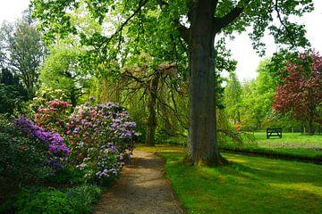 Arboretum Trompenburg van