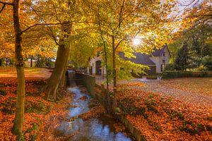 Herfst op Landgoed Staverden van
