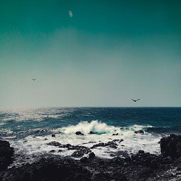Smaragd - Oceaan van Dirk Wüstenhagen