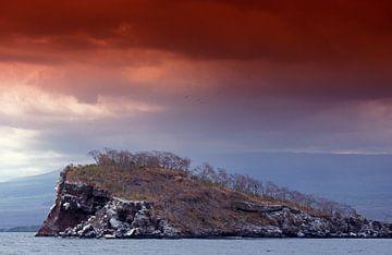 Felsküste der Galapagos-Inseln von paul van Gaalen