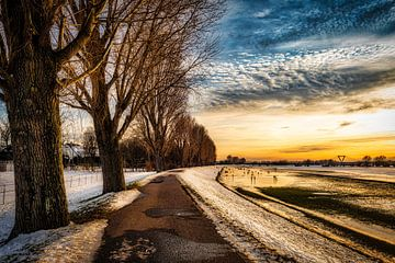 Winterlandschap met boom en sneeuw en wolkenpartij aan de Rijn bij Düsseldorf van Dieter Walther
